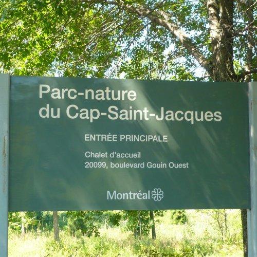 Cap St-Jacques et Ile Bizare